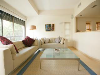 Zlatopolsky Gold Hilton Beach - Tel Aviv vacation rentals