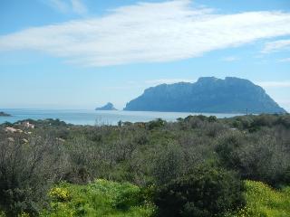 Quadrilocale Nicoleta Porto Istana, great sea view - Olbia vacation rentals