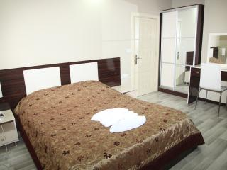 Nice Condo with Internet Access and Cleaning Service - Van vacation rentals