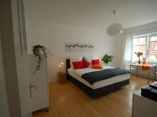 Modern and stylish studio in the center of Hanover - Hannover vacation rentals