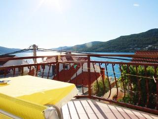 Nice 1 bedroom Apartment in Seget Vranjica - Seget Vranjica vacation rentals