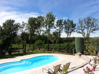 Nice Villa with Internet Access and A/C - Draguignan vacation rentals