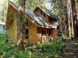 #4 - A pet-friendly cedar cabin with a hot tub! - Glacier vacation rentals