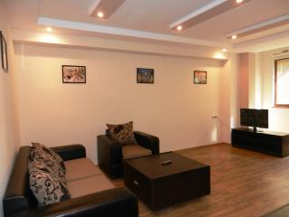 Luxury Apartmen in the Center of Yerevan - Yerevan vacation rentals