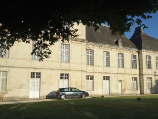 Nice Chateau with DVD Player and Private Outdoor Pool - Preuilly-sur-Claise vacation rentals