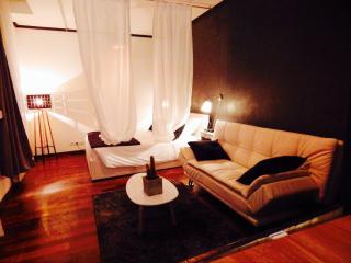 Studio chaleureux au centre de Strasbourg - Strasbourg vacation rentals