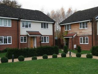 4 bedroom House with Internet Access in Epsom - Epsom vacation rentals
