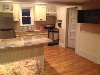 Long Beach Island, 1 block from beach - Long Beach Township vacation rentals