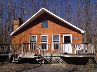 Cozy cabin in Poconos - Kunkletown vacation rentals