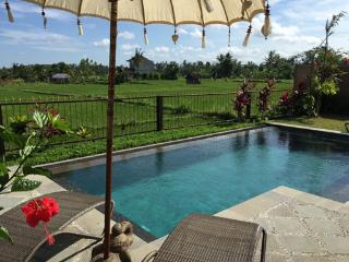 Devi's Place Ubud- space & privacy at Villa Intani - Ubud vacation rentals
