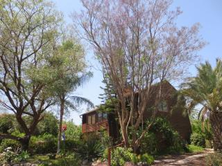 Paradise in the Galilee! - Yavne'el B & B - Galilee vacation rentals