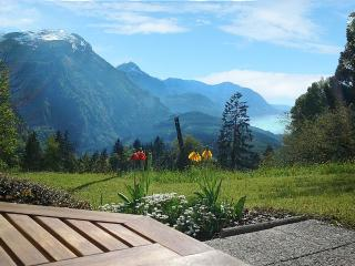 Nice Condo with Deck and Internet Access - Schwyz vacation rentals