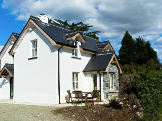 2 bedroom House with Internet Access in Kenmare - Kenmare vacation rentals