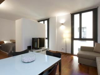 CITY CENTER STUDIO + FREE PRIVATE PARKING - Palma de Mallorca vacation rentals
