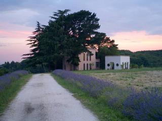 Tenuta Storica(Tuscia)TORRE DEL FALCO - Ronciglione vacation rentals