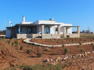 NakosHomes | Rental Villa | Home Holiday - Paros vacation rentals