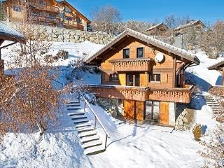 Ski chalet with beautiful views of the mountains - Les Allues vacation rentals