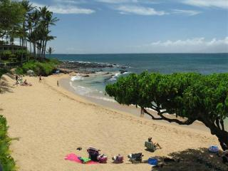 Charming Condo with Internet Access and Dishwasher - Lahaina vacation rentals
