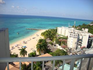 Beautiful 1 bedroom Saint Ann's Bay Apartment with Deck - Saint Ann's Bay vacation rentals
