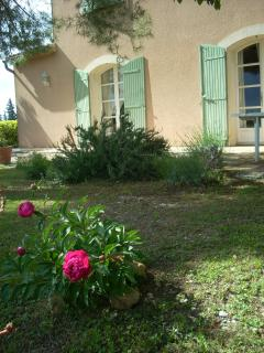Nice Guest house with Internet Access and Local Guides - Sainte-Cécile-les-Vignes vacation rentals