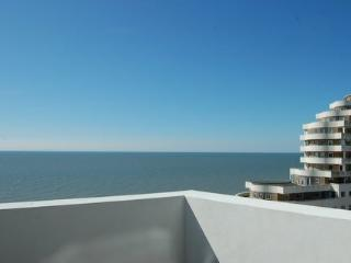 Modern penthouse with panoramic sea views - Hastings vacation rentals