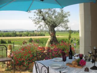 Mas provençal avec vue imprenable - Saint-Roman-de-Malegarde vacation rentals