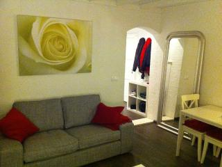 Amsterdam cozy one bedroom apartment - Badhoevedorp vacation rentals