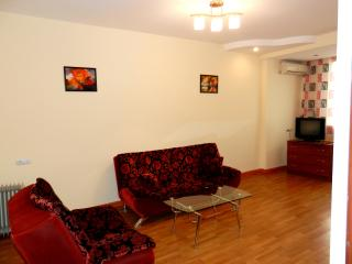 Nice Apt. in the center / Красивая кв. в центре - Yerevan vacation rentals