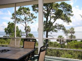 Relaxed Bay Front Home with Hot Tub, Superb Sunrise & Wildlife Viewing, Dock - Cape San Blas vacation rentals