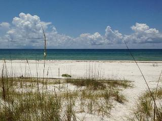 ONLY ONE AUGUST WEEK REMAINS! Rate reflects discount. - Cape San Blas vacation rentals