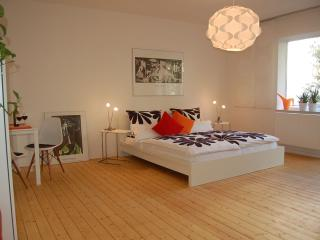 Modern apartment for 4 persons, center of Hanover - Hannover vacation rentals