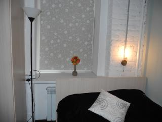 Nice Condo with Internet Access and Television - Saint Petersburg vacation rentals