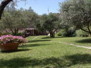 Beautiful Villa with Internet Access and A/C in Cortona - Cortona vacation rentals