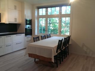 Nice, spacious apartment near the city centre - Bergen vacation rentals