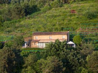 Agriturismo Karma - Montignoso vacation rentals