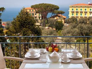Amazing Seafront Apartment, no car needed,wifi, AC - Sorrento vacation rentals
