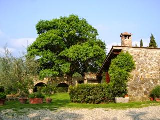 Le Bonille - Greve in Chianti vacation rentals