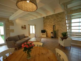 The Chai apartment near bordeaux - Teuillac vacation rentals