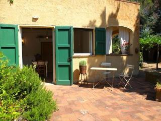PODERE UCCELLIERA IN TUSCANY: sea, sun, wine - Castagneto Carducci vacation rentals