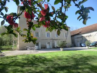 Romantic 1 bedroom Nuits-Saint-Georges Bed and Breakfast with Internet Access - Nuits-Saint-Georges vacation rentals