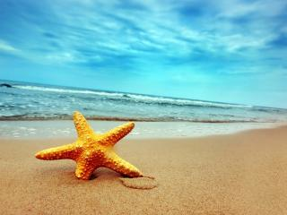 Windsor Beach Resort - Candolim vacation rentals