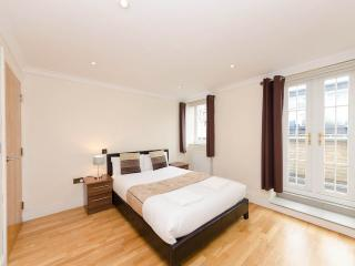 *XMAS & NEW YEAR SALE* Terrace Aprt Central London - London vacation rentals