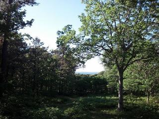 Mink Meadows Home with Beautiful Views of Vineyard Sound - Vineyard Haven vacation rentals