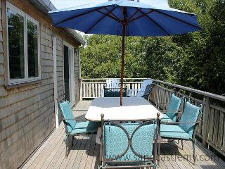 Spacious, sunny house on private and quiet half acre lot - Edgartown vacation rentals