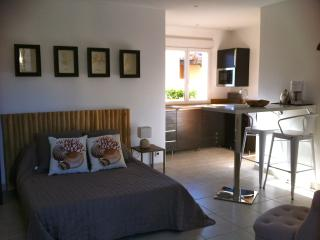 Nice Condo with Internet Access and Wireless Internet - Le Grau d'Agde vacation rentals