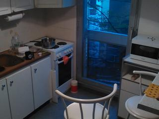 Nice Condo with Internet Access and Balcony - Sevres vacation rentals