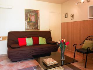 Domaine du Grand Lauron 3 - Cadenet vacation rentals