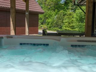 Ben Lomond 5 Star:  huge PRIVATE hot tub and sauna - Drymen vacation rentals