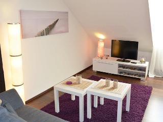 Modern, cozy 1room-Apt, near Lake - Lebenswert - Meersburg (Bodensee) vacation rentals