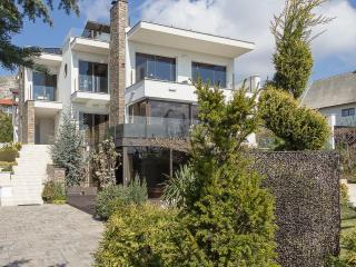 Luxury villa with inside pool - Budapest vacation rentals